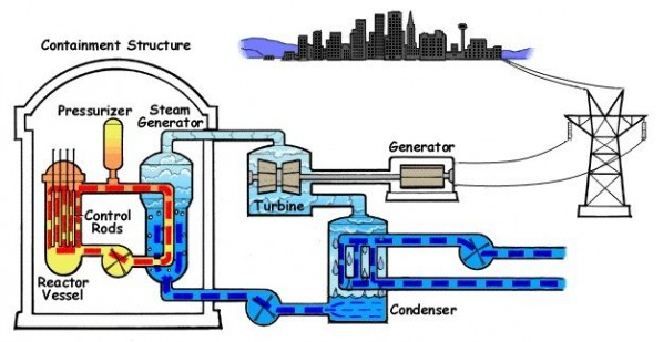 The Pressurized Water Reactor (PWR)